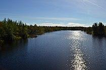 Река Наутсийоке. Вверх по течению. Август 2016 г. - panoramio.jpg