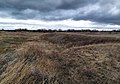 Ров и вал западной части крепости Кирилловская - panoramio.jpg