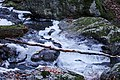 Стара река, предколедно.jpg