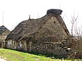 Стара хата, село Новопетрівське.jpg