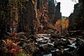 Ущелье водопада осенью.jpg