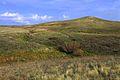 Холм - panoramio.jpg
