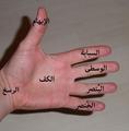 يد الإنسان.png