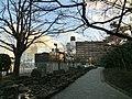 三笠公園 - panoramio (47).jpg