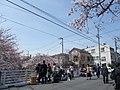中板橋 石神井川 - panoramio.jpg