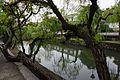 倉敷川 Kurashiki River - panoramio (2).jpg