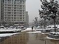 南京雅居乐花园雪景 - panoramio.jpg