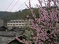 向阳村委会 - panoramio.jpg