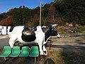 大橋牧場 - panoramio.jpg