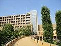東京外国語大学 - panoramio (11).jpg