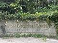 植物園中的植物及樹木花草(包括歷史遺跡)-1.jpg