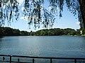 洗足池 - panoramio.jpg