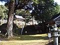 織田神社 - panoramio.jpg