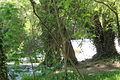 007512 - Monasterio de Piedra (8736442284).jpg