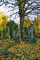 041 - Wien Zentralfriedhof 2015 (22935362260).jpg