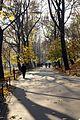 07367 Planty krakowskie. Foto Barbara Maliszewska.jpg