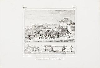 1. Transport de viande de boucherie