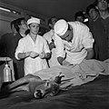 18.05.76 à l'école vétérinaire de Toulouse, opération d'un brocard jeune cerf (1976) - 53Fi889.jpg