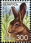 2008. Stamp of Belarus 10-2008-06-10-zayats.jpg