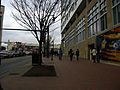 2009 03 10 - 2716 - Silver Spring - MD384 @ Discovery (3345380149).jpg