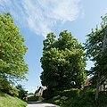 20140524 Sieghartskirchen 7327.jpg