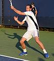 2014 US Open (Tennis) - Tournament - Michael Llodra (15131404702).jpg