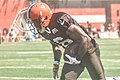 2016 Cleveland Browns Training Camp (28076196033).jpg