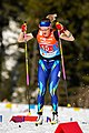 20190228 FIS NWSC Seefeld Ladies 4x5km Relay Anna Shevchenko 850 4719.jpg
