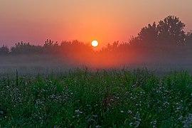20200809 Wschód słońca na Pychowicach w Krakowie 0537 3462.jpg
