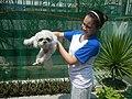 52Photos taken during 2020 coronavirus pandemic Meycauayan, Bulacan 02.jpg