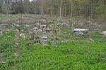 60 Fundament- und Mauerreste Fasslager 02.jpg
