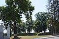 61-224-5032 вишнівецький парк.jpg