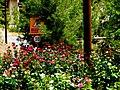 A@a Apliki village Nicosia Cyprus - panoramio (14).jpg