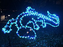 A Lizard in Lights.JPG
