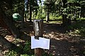 A campsite marker in Igloo Creek Campground (f7e6d148-8445-4d61-b354-7ff51c76fafa).JPG