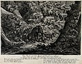 A sow with her piglets in a forest. Etching by J.E. Ridinger Wellcome V0020997.jpg