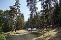 Abastumani Park.jpg