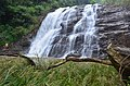 Abbey Falls Kodagu.jpg