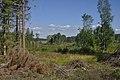 Abertamy, Perninské rašeliniště.jpg