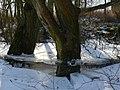 Abgesacktes Eis 2012 - panoramio.jpg