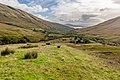 Above Edentaggart, Luss Hills, Scotland 02.jpg