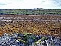 Across Loch Eishort - low tide - geograph.org.uk - 2012034.jpg