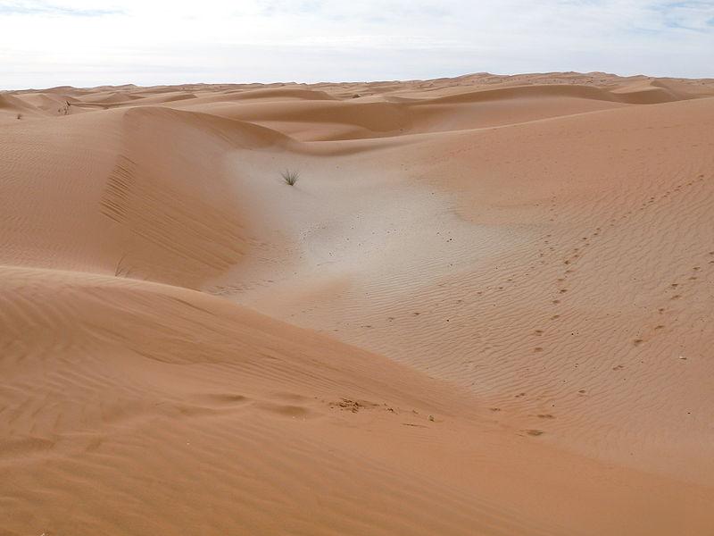 File:Adrar sands.JPG