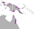 Ailuroedus melanotis range.png