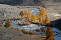 Akkol river 03.jpg