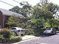 Alexandria Storm, August 2010 (4872211539).jpg