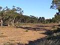 Alice Springs, Australia, 2004 - panoramio (3).jpg