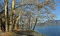 Allée next to lake Orestiada (lake of Kastoria) in Greece.jpg