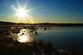 Amanecer en la laguna de Gallocanta.jpg