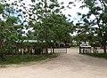 Amboseli Elephant Research Camp (32892845886).jpg